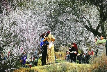 林芝游客拍的风景图