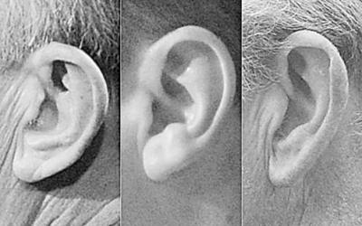 耳朵形状可用于身份识别