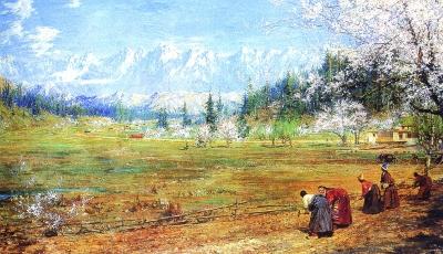 油画西藏之窗_风景520