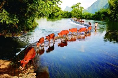 南方乡村山水风景图片