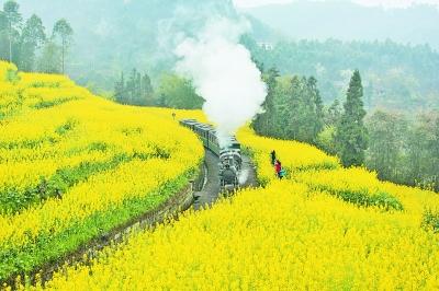 开往春天的小火车