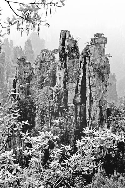 森林旅游:如何写好绿文章