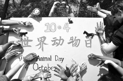 志愿者们以手绘动物的形式生动形象地展现了活动主题
