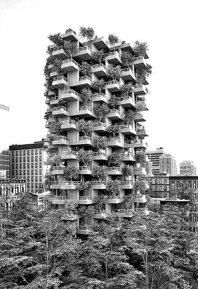 加拿大多伦多的一幢高度木结构集合住宅设计方案,建成后高层达62米.小美甲店设计装修风格图片