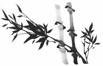 洪朝宗:东坡爱竹——谈苏轼的咏竹诗画 - 潇攸子 - 潇湘大地 攸子情深